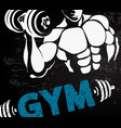 gym sport design vector image