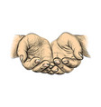 hands palms together sketch begging hands on vector image vector image
