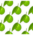 lime fruit hand drawn colored sketch as seamless vector image