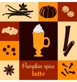 Pumpkin spice latte on colored background vector image