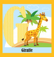animal alphabet g vector image vector image