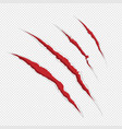 claw scrathes vector image