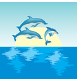 dolphin on sunrise vector image vector image
