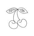 one line cherry drawing isolated on white vector image