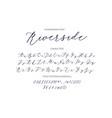 riverside - handwritten script font vector image vector image