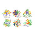 set logos with exotic fruits and birds vector image