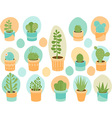 Succulent mix vector image vector image