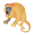 surprised monkey icon cartoon style vector image vector image
