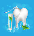 tooth dental care realistic vector image vector image