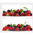 Two banners with delicious ripe berries vector image