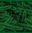 background from branches xmas tree vector image