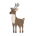 cute cartoon reindeer arctic animal vector image