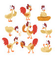 funny hen set comic cartoon bird characters in vector image vector image