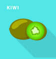 kiwi icon flat style vector image