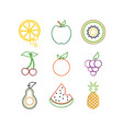 outline fruit logo icon template vector image vector image