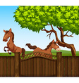 Two brown horse in the field vector image vector image