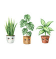 watercolor cute cartoon houseplant in pots with vector image