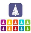 christmas tree icons set vector image
