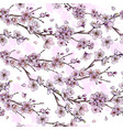 sakura in bloom seamless pattern hand drawn vector image