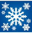 Set from original snowflakes vector image vector image