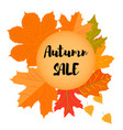 set of autumn yellow leaves and circular emblem vector image vector image