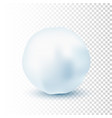 snowball isolated on transparent background vector image vector image