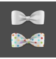 White Bow Tie Set vector image vector image