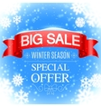 Winter Sale Banner vector image vector image