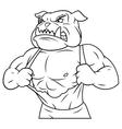 Aggressive bulldog tearing his shirt 2 vector image
