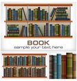 Books on shelves text vector image vector image