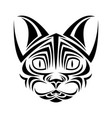 cat feline tribal tatto animal creativity design vector image