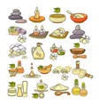 colorful spa accessory icon vector image vector image