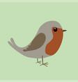 cute robin vector image vector image