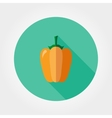 Yellow bell pepper Icon vector image vector image