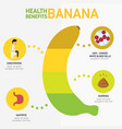 health benefits of banana infographics vector image vector image