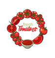 round frame of tomatoes salsa ketchup bowl vector image vector image