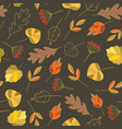 seamless pattern with autumn colorful leaves in vector image vector image
