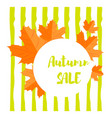 set of autumn yellow leaves and round emblem with vector image
