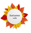autumn sale concept background realistic style vector image vector image