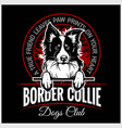 border collie - for t-shirt vector image vector image