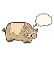 cartoon pig with thought bubble vector image vector image