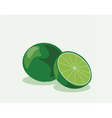Lime fruits isolated on isolated vector image vector image