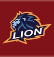 lion head cool logo mascot esport design vector image