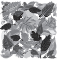 Monochrome Autumn Leaves vector image vector image