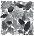 Monochrome Autumn Leaves