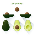 set of fresh avocados isolated on white background vector image