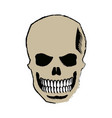skull of pirate dead mystery symbol vector image