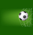 soccer ball in net hitting goal vector image vector image