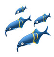 the growth stage of unusual elephant nosed fish vector image vector image