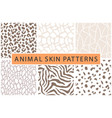 animal skin bold textures print pattern set vector image